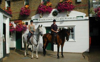 Wimbledon Village Stables