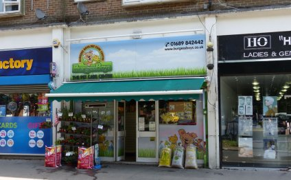 Pet Shops in Wimbledon